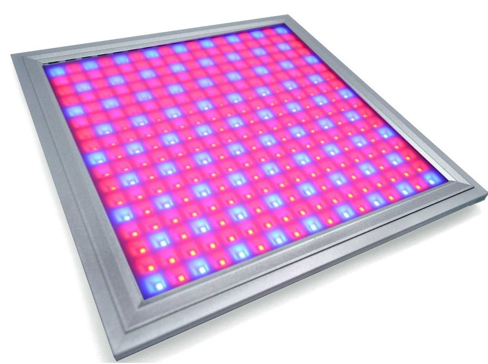 Applications and Benefits of LED Grow Lights for Vegetables